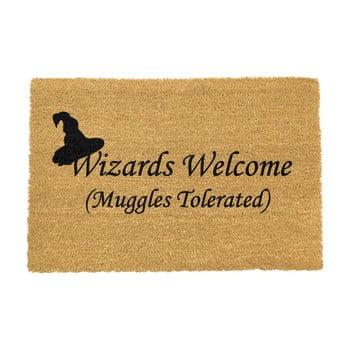 Covoraș intrare din fibre de cocos Artsy Doormats Wizards Welcome, 40 x 60 cm bonami.ro