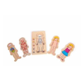 Jucărie din lemn Legler Anatomy Girl poza bonami.ro