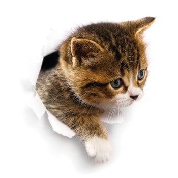 Autocolant de perete Ambiance Hiding Cat bonami.ro