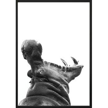 Poster DecoKing Hippopotamus, 100 x 70 cm bonami.ro