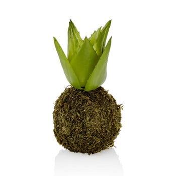 Plantă artificială decorativă The Mia Succu poza bonami.ro