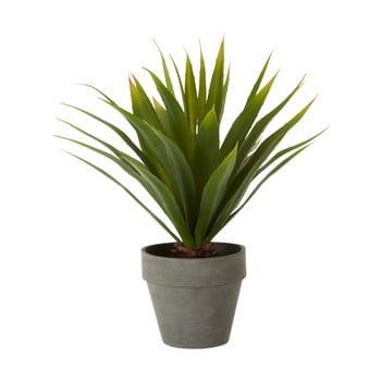 Plantă agave artificială în ghiveci gri Premier Housewares Fiori imagine