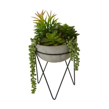 Plantă suculentă artificială în ghiveci gri Premier Housewares Fiori poza bonami.ro