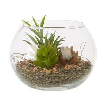 Plantă suculentă artificială în ghiveci din sticlă Premier Housewares Fiori poza bonami.ro