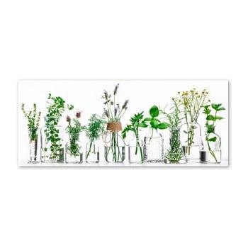 Tablou Styler Glasspik Herbs, 30 x 80 cm bonami.ro