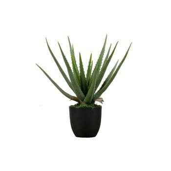Aloe vera artificială WOOOD, înălțime 46 cm poza bonami.ro