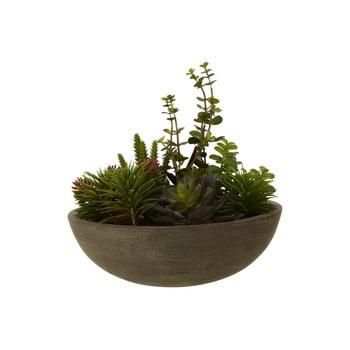 Plantă suculentă artificială în ghiveci Premier Housewares Fiori poza bonami.ro