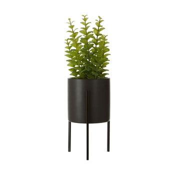 Cimbru artificial în ghiveci din ceramică negru Premier Housewares Fiori poza bonami.ro
