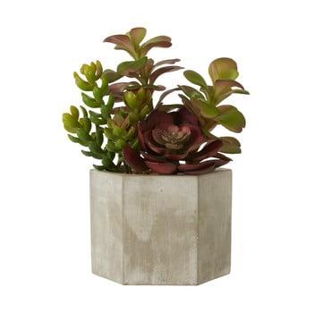 Plantă suculentă artificială în ghiveci gri de ceramică Premier Housewares Fiori poza bonami.ro