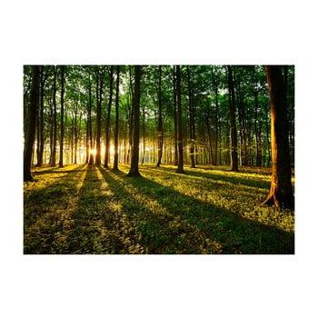 Tapet format mare Bimago Morning, 400 x 280 cm imagine